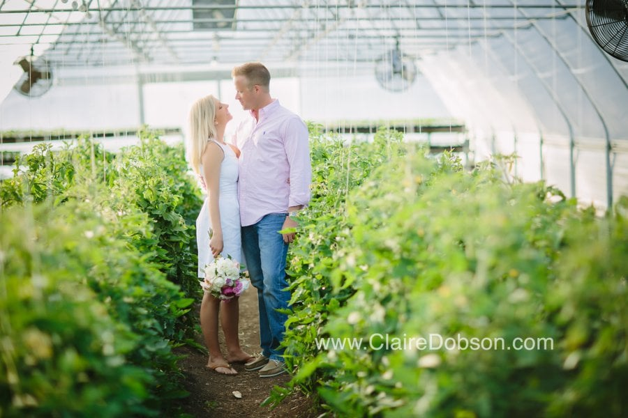 Green house engagment