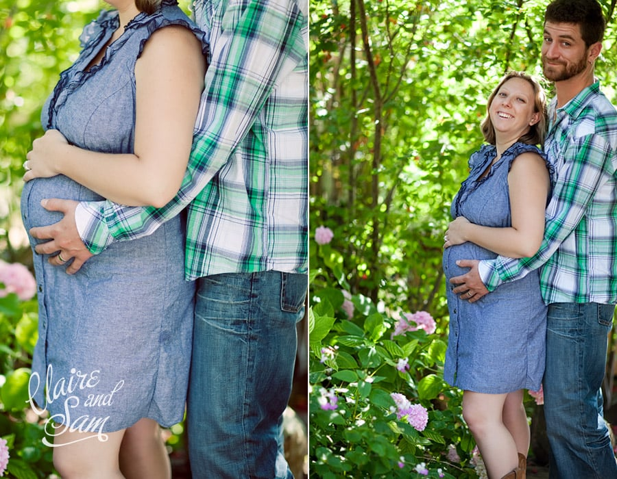 maternity pictures at petaluma farm