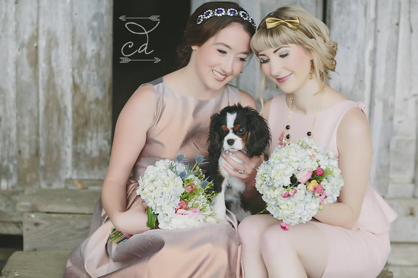 Bridesmaids and dog