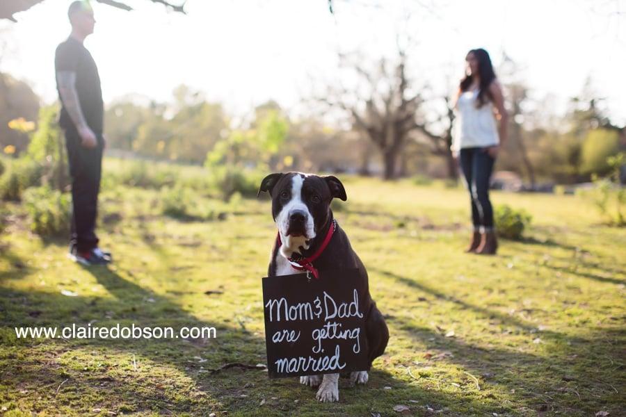 sonoma county wedding photographer_0004