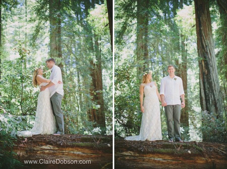 wedding photography in redwoods
