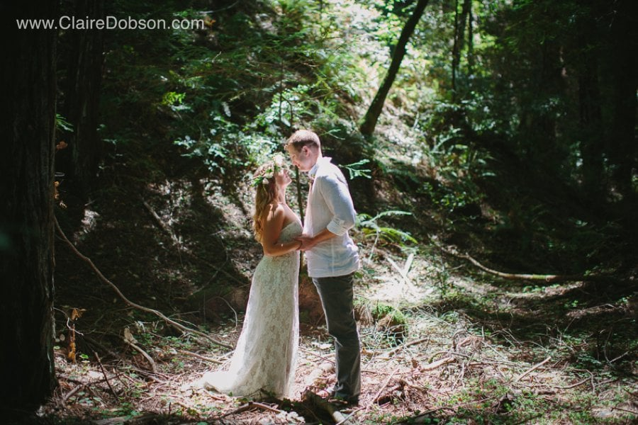 Armstrong Woods wedding photographer