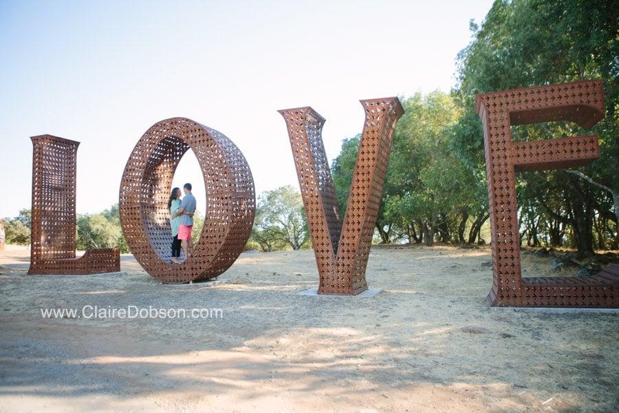 sonoma wedding photographer_0058