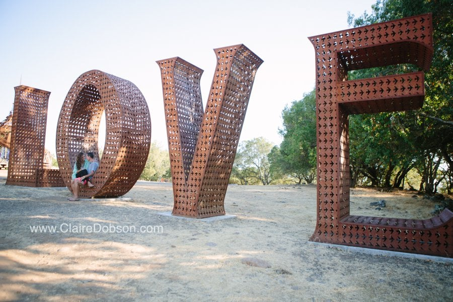 sonoma wedding photographer_0059