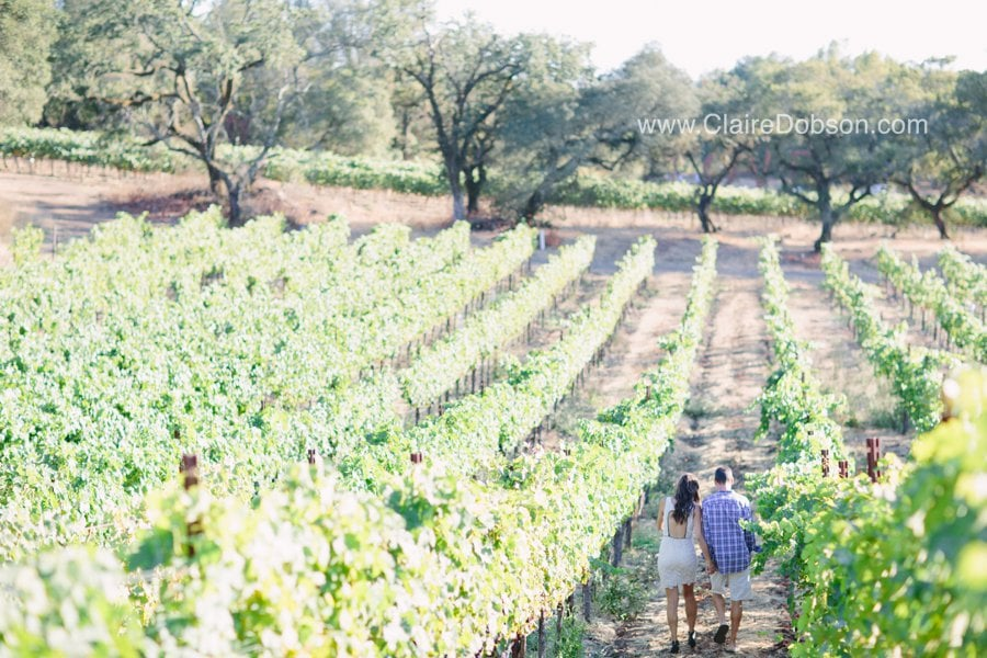 sonoma wedding photographer_0068
