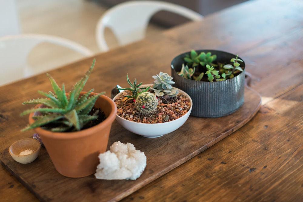 small planters closeup