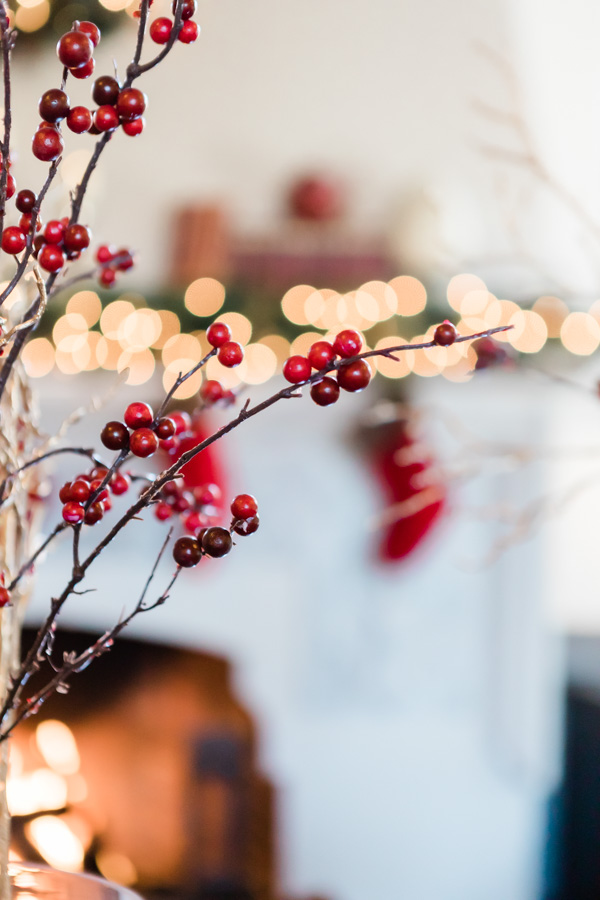 free holiday stock photos