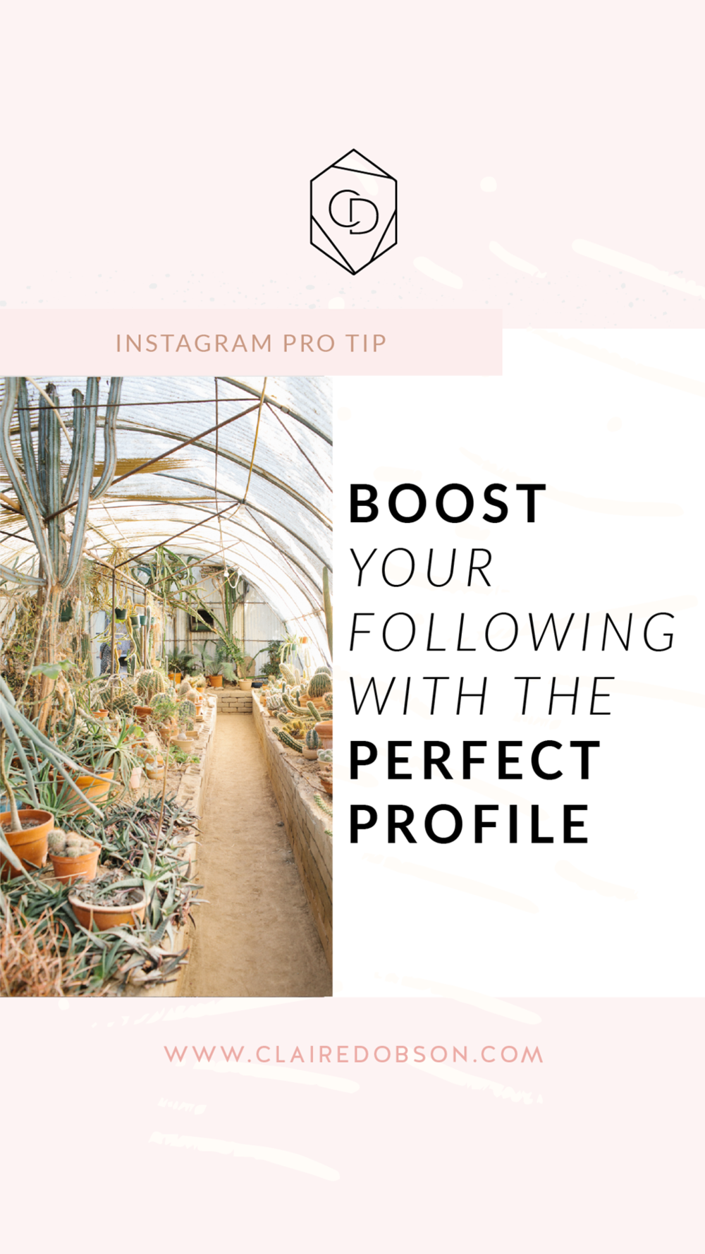 5 Quick Steps to Seriously Optimize Your Instagram Profile | You want an Instagram profile that highlights what you offer, tells them your brand story at a glance and shows that you're THE leader in your industry. These are the 5 essentials you need for an Instagram profile that shares your message and your work with a purpose.. #instagramtips #socialmediamarketing #socialmediamanagement
