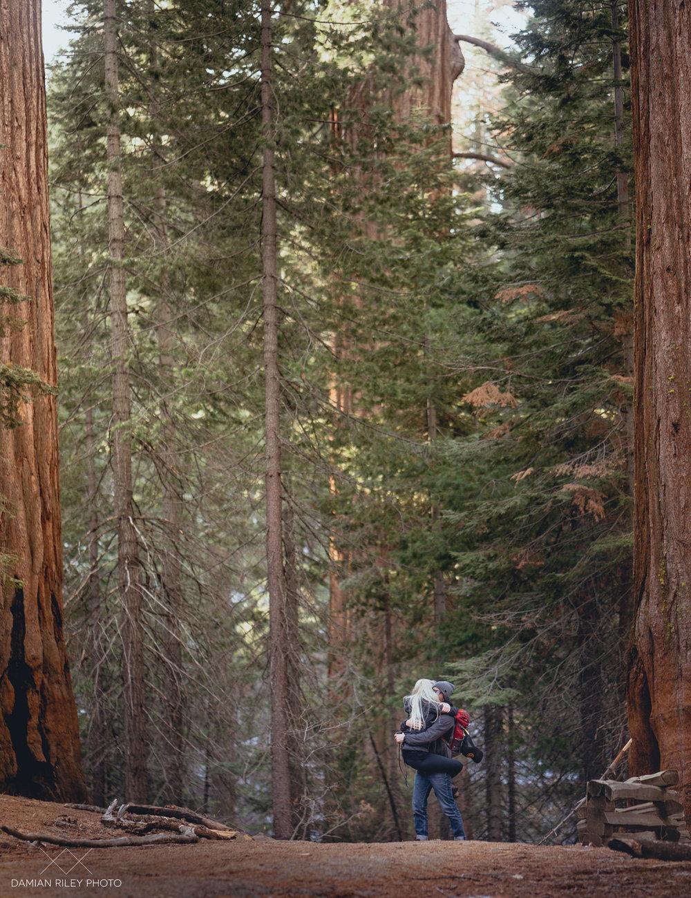 trev-grove-(2-of-12).jpg