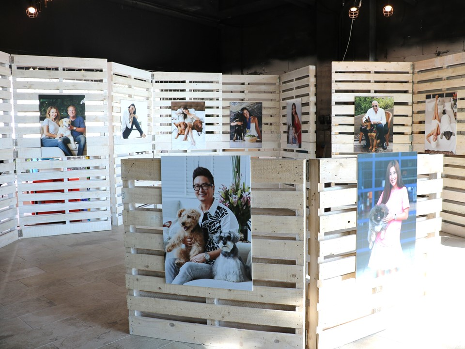 SPCA Best OF Friends Photo Exhibition.JPG