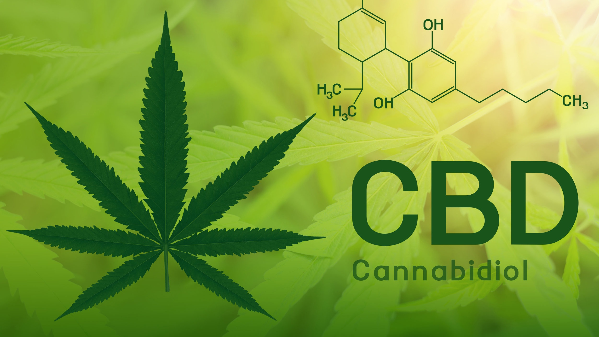 VDACS Okays Manufacture of CBD Products Intended for Human ...
