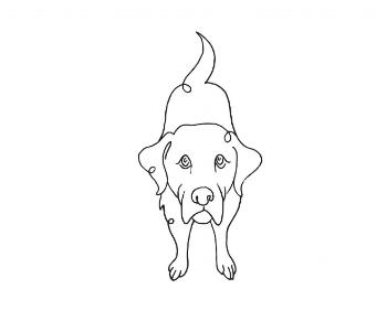 danny logo2.jpg