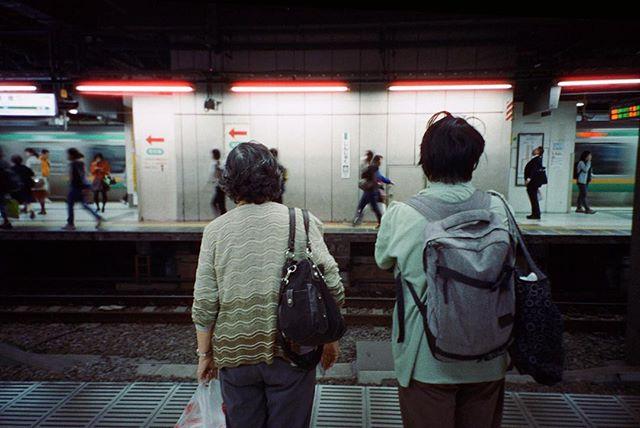 NEON  Tokyo, 2016. #contax #iso800 #cinefilm #35mm #tokyo #japan #shootfilm