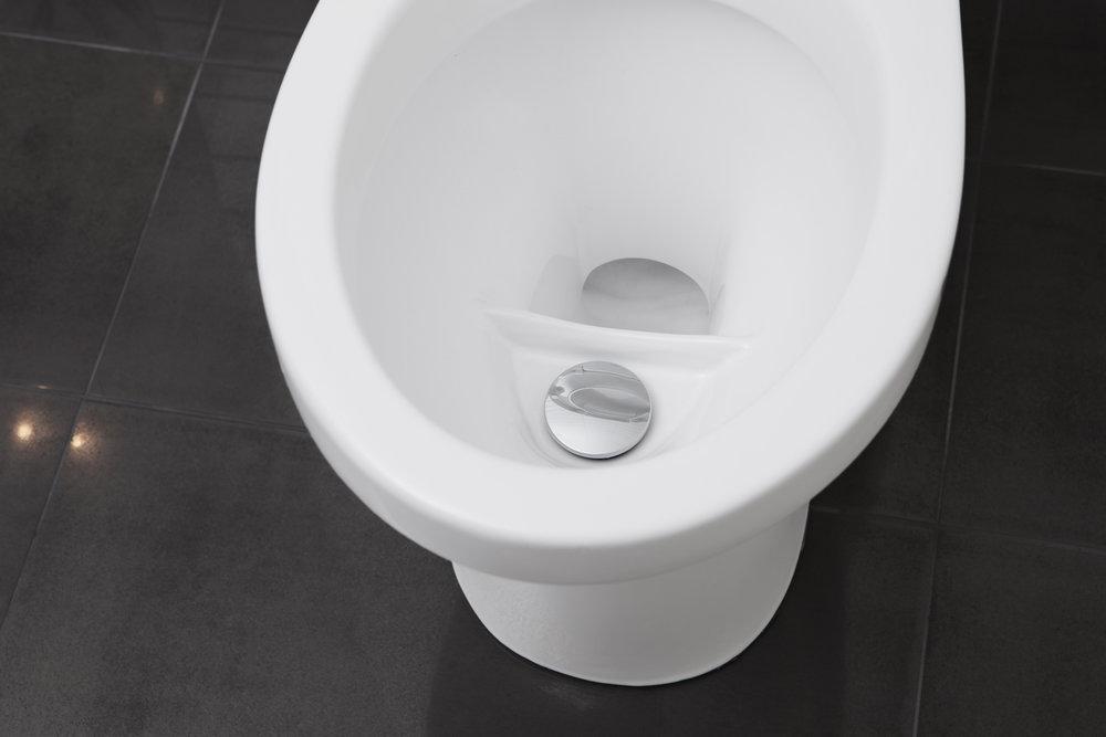 EcoFlush unika design delar upp urinen till den främre delen och gör det möjligt att förbruka extremt lite vatten.