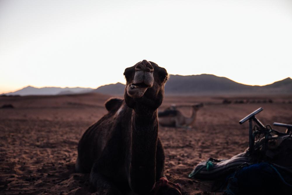Morocco_-92.jpg
