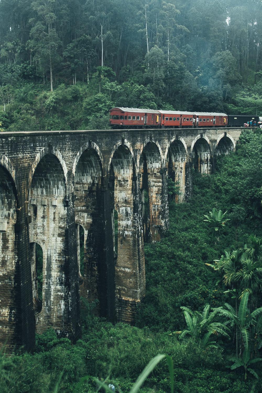 Lanka  (175 of 206).jpg