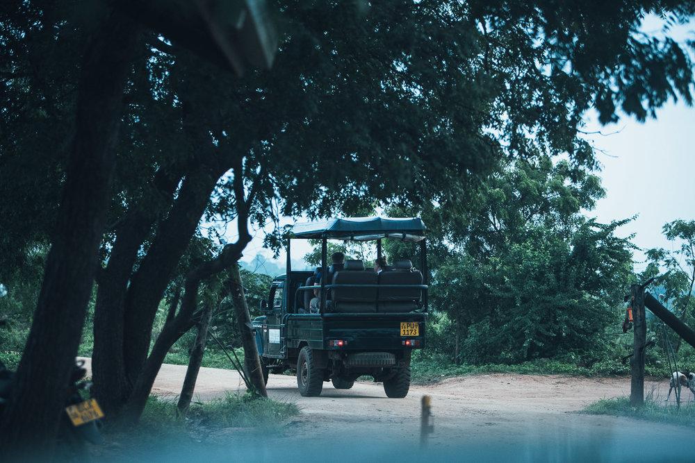Lanka  (137 of 206).jpg
