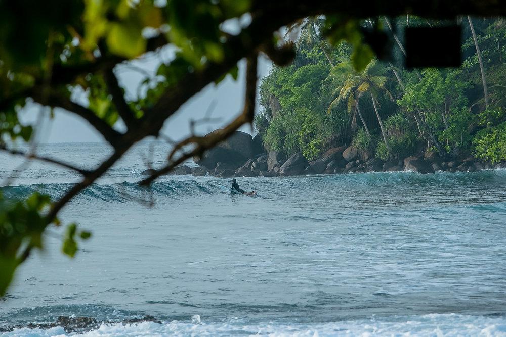 Lanka  (95 of 206).jpg