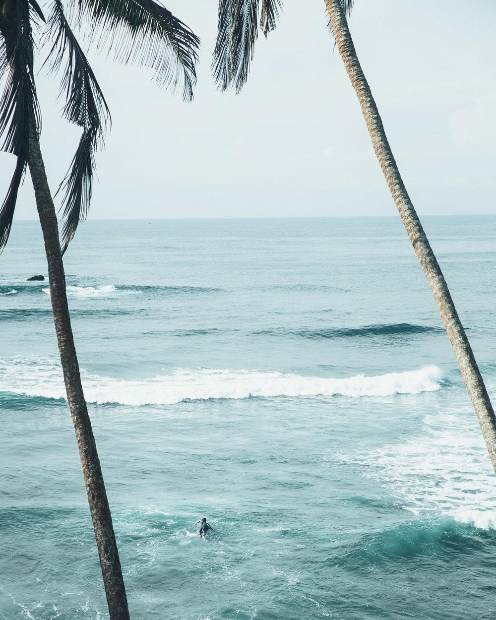 Lanka  (83 of 206).jpg