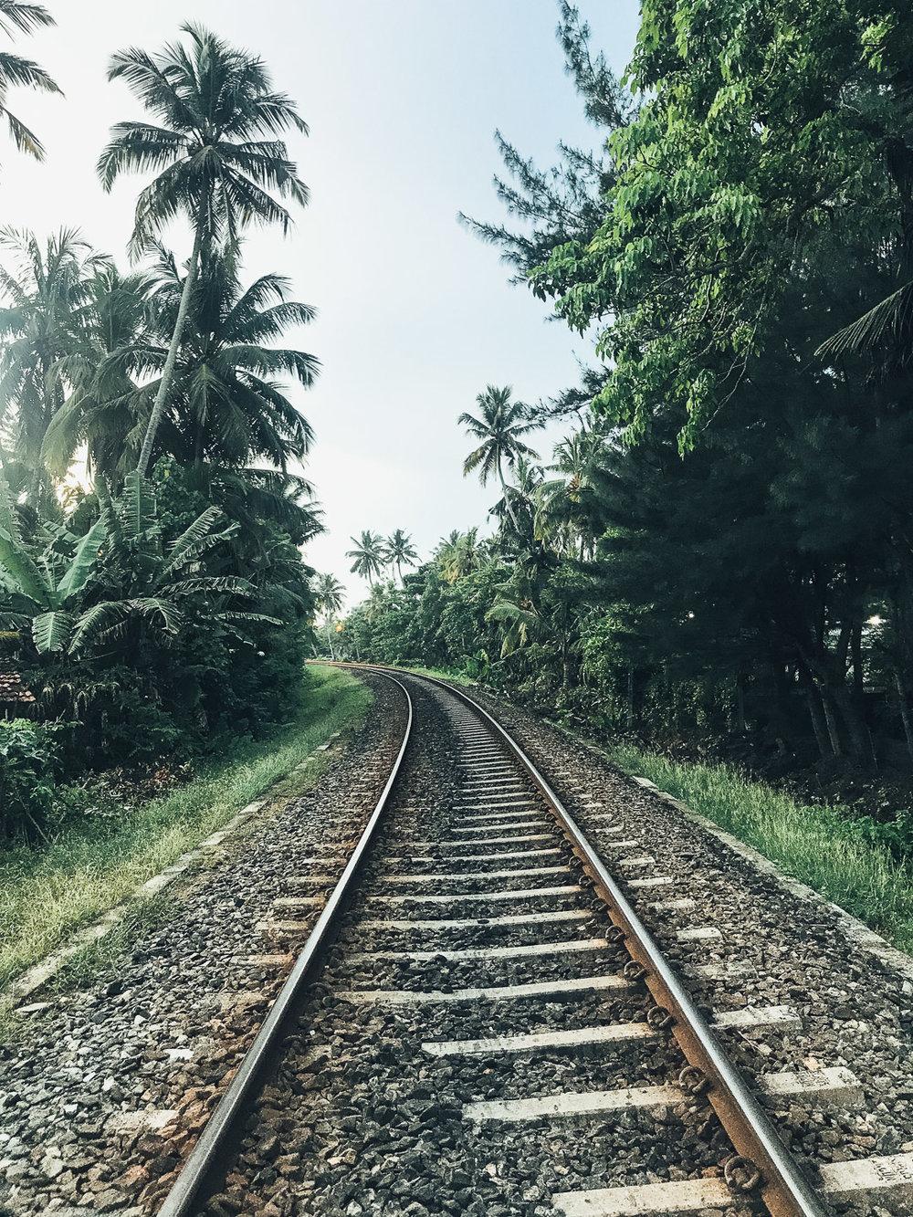 Lanka  (44 of 206).jpg