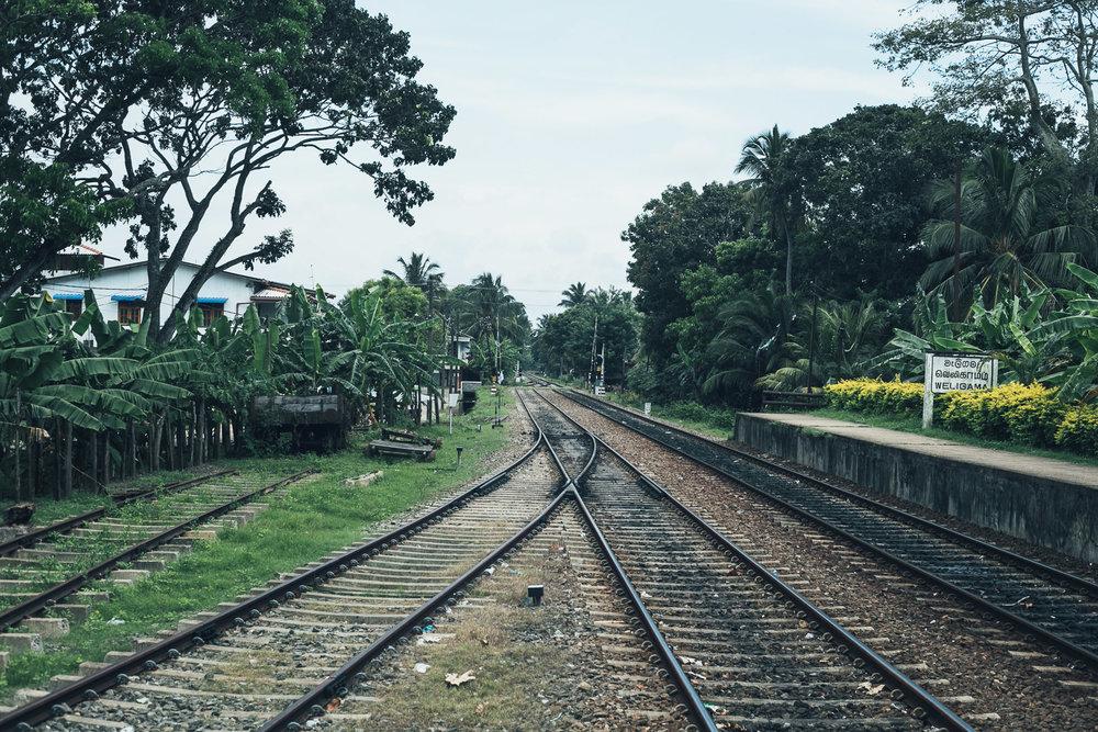 Lanka  (17 of 206).jpg