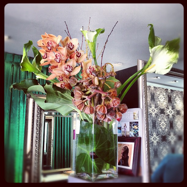 #mrcook #flowers #salon (Taken with Instagram)