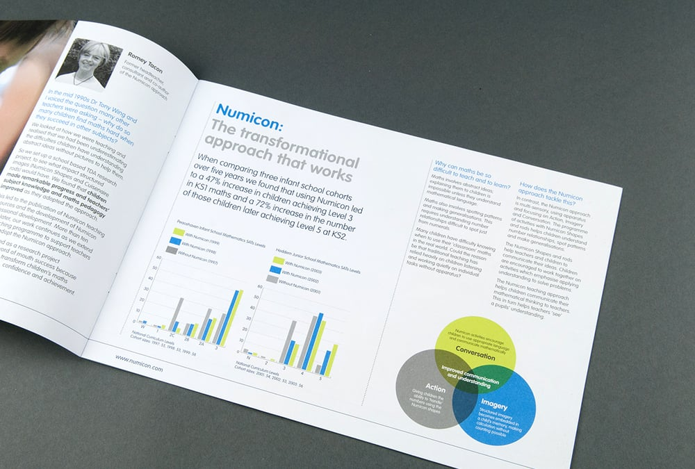 Professional development marketing brochure