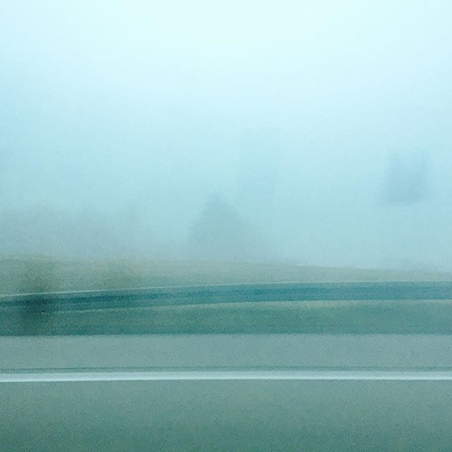 #fog #morning #travelling