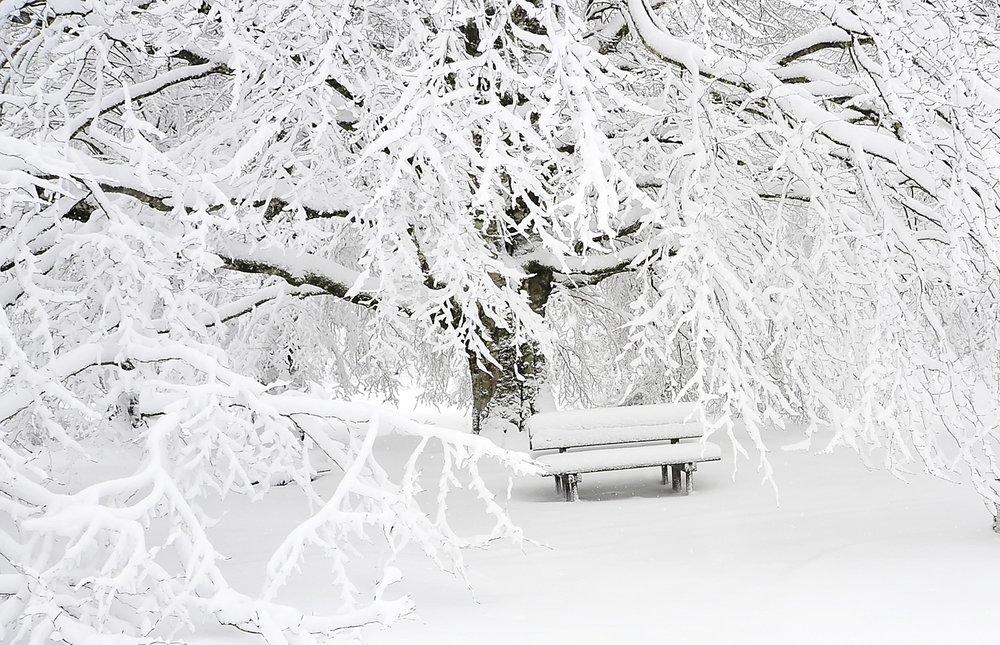 bench-cold-empty-209839.jpg