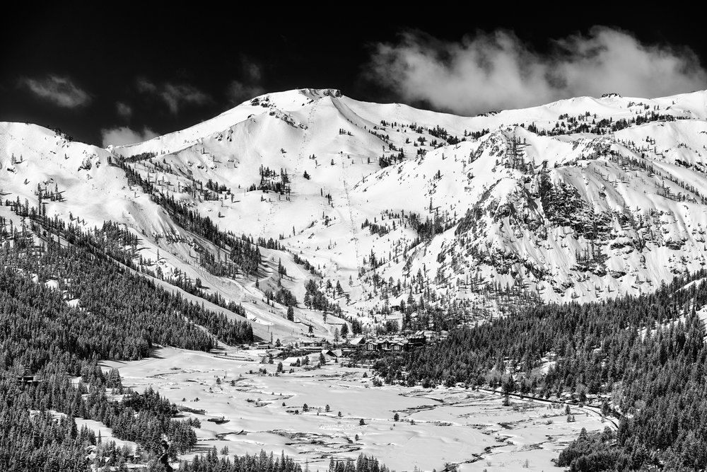 20170327_GK-SquawAlpine_9550-Edit_bw.jpg