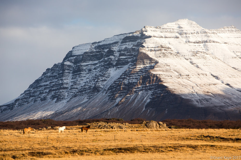 20130302_GK_Iceland_MG_2512.jpg