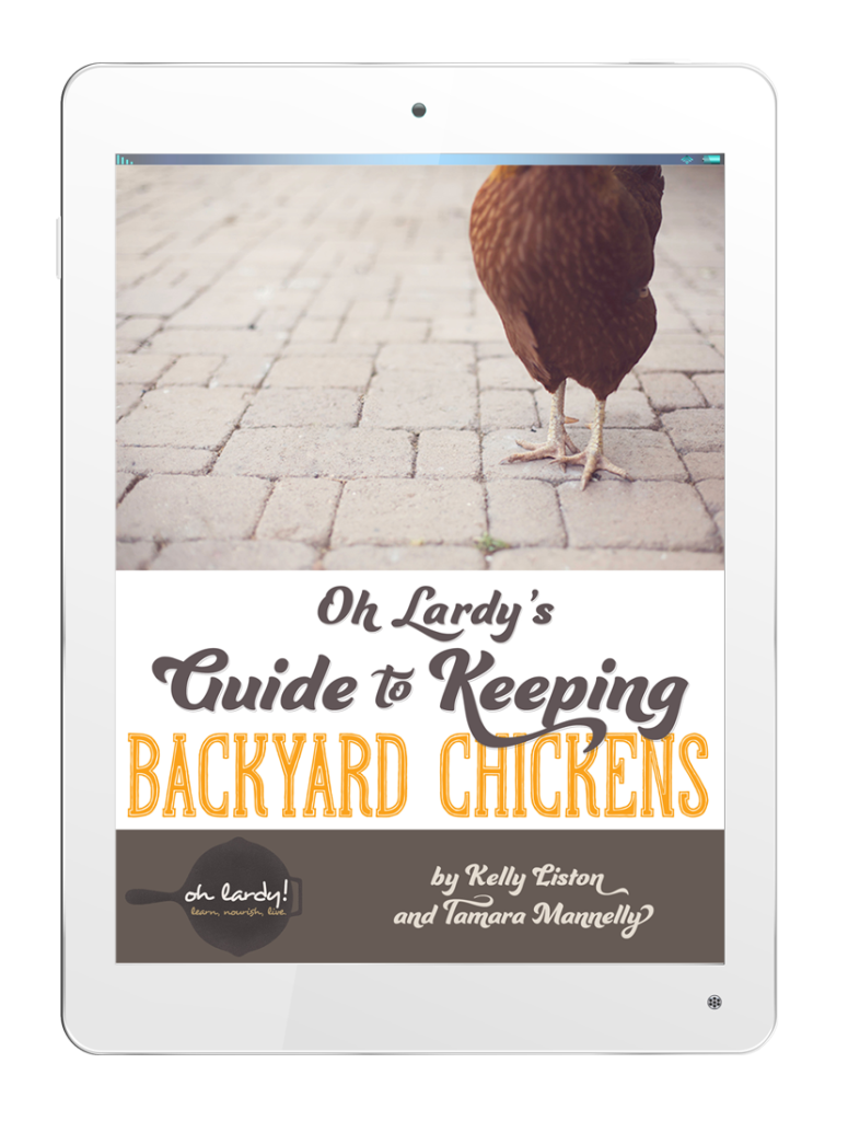 oh lardy backyard chickens ipad
