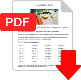 Lemon Before Emails PDF Example