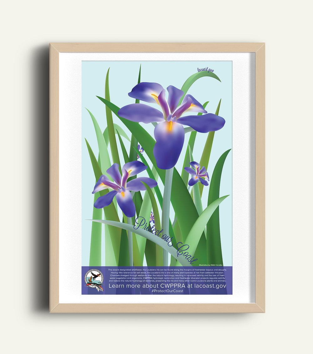 iris poster.jpg