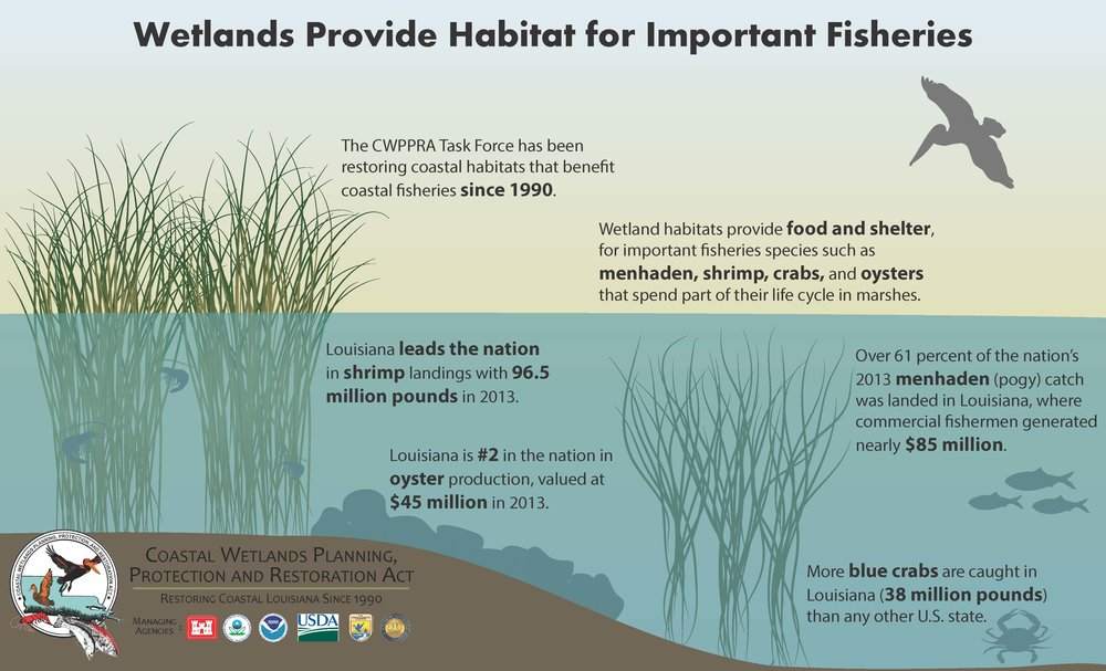 Fisheries graphic_Page_1.jpg