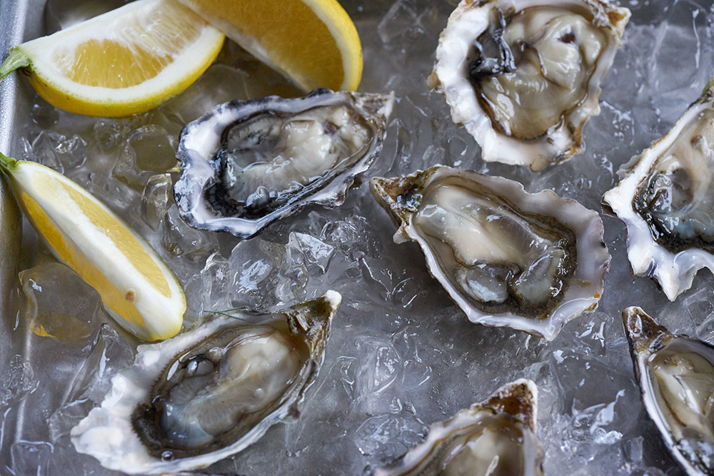 17FAL_700_oysters_0146.jpg
