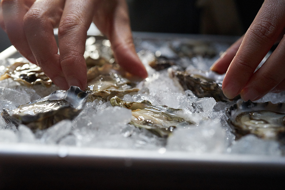 17FAL_692_oysters_0116.jpg