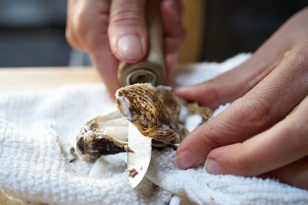 17FAL_670_oysters_0032.jpg