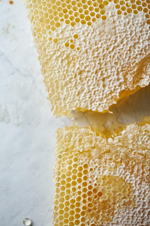 Honeycomb_0824.jpg