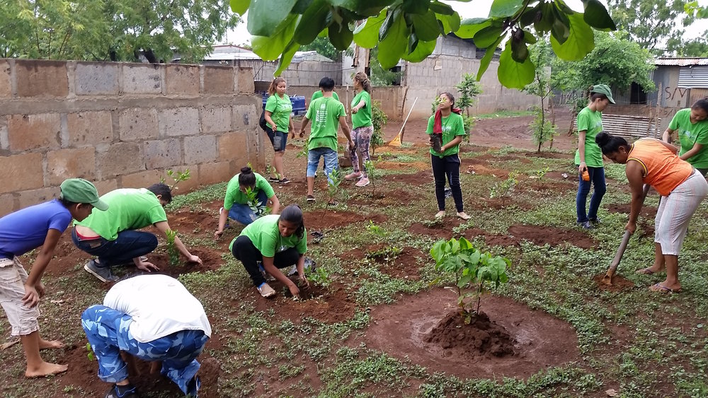 The entire Arco Iris team chipped in to plant 18 citrus trees and 18 banana and palm trees.
