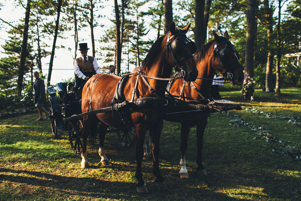 Jane_Brian_Mackinac_Island_107.jpg