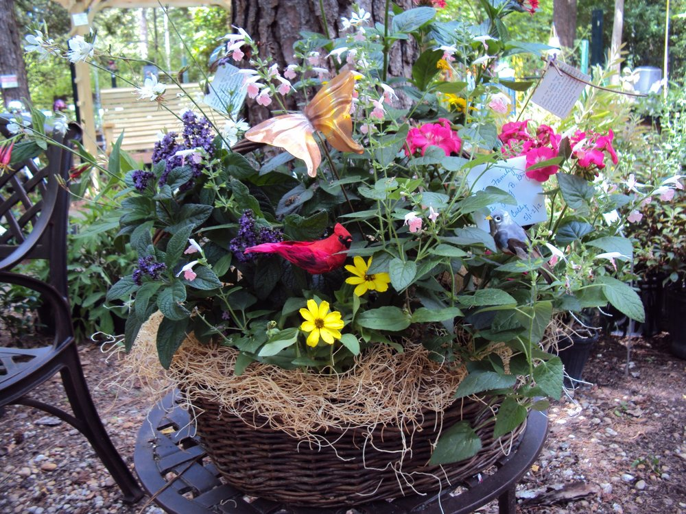 basketflower07_12000.jpg
