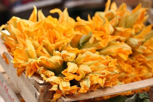 zucchiniblossoms