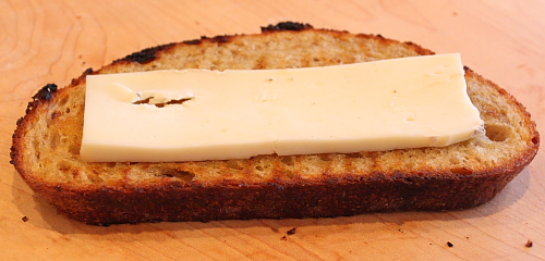 Toasted bread with Taleggio