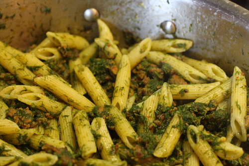 Pasta tossed with wild fennel sauce