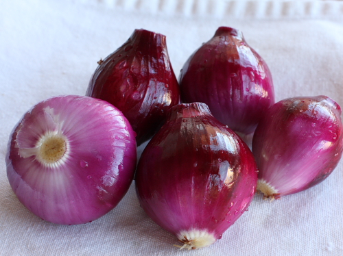 Cleaned fresh red onions
