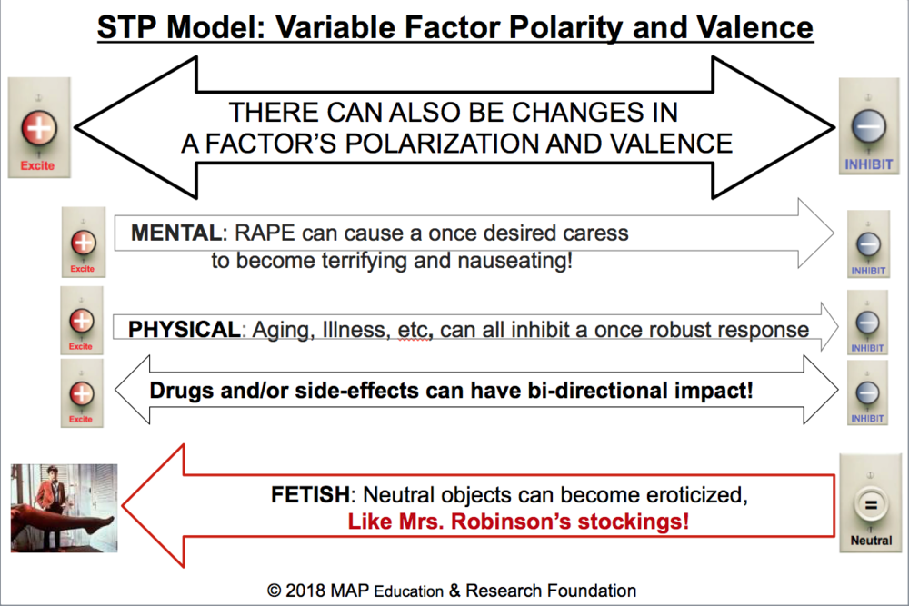 STP Model_ Variable FactorePolarity and Valence.png