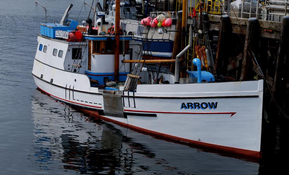 Arrow EJ.jpg