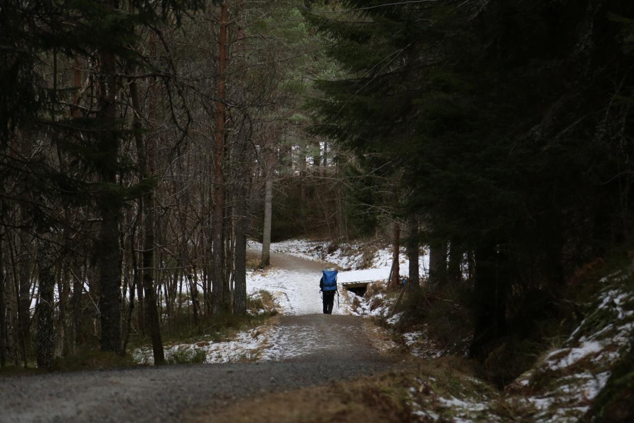 2. en enslig vandrer