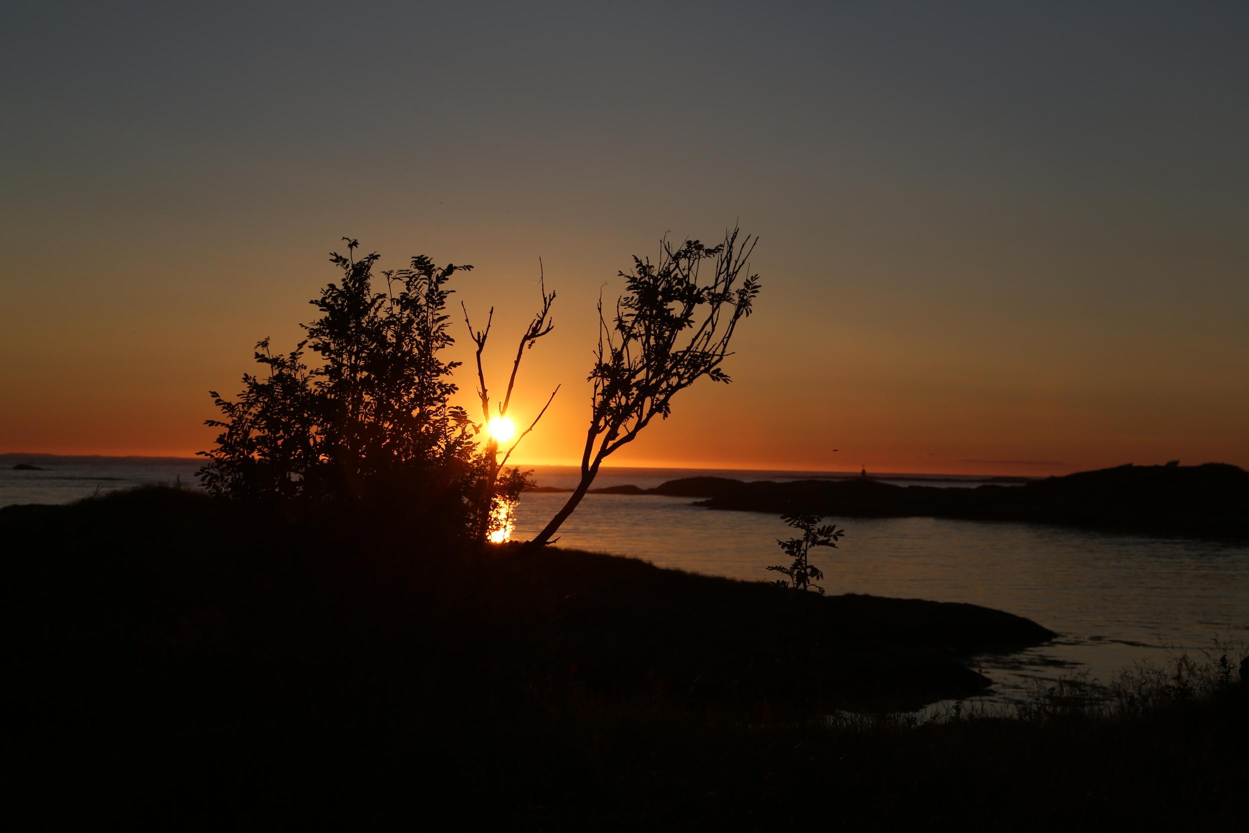 Nordvestlandet har de beste utsikter for turistene. dersom de tør å ta seg betalt. Og da er mat et viktig middel - for selger og kjøper. Foto: Odd Roar Lange